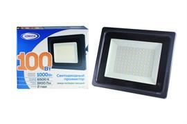 Прожектор светодиодный ТМ IONICH IFLSLED-DOB-100-865-BL-IP65